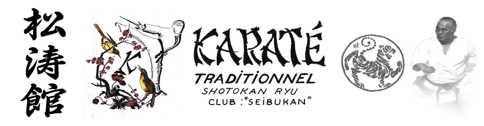 Seibukan Karaté Club
